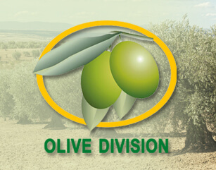 Olive Oil Council