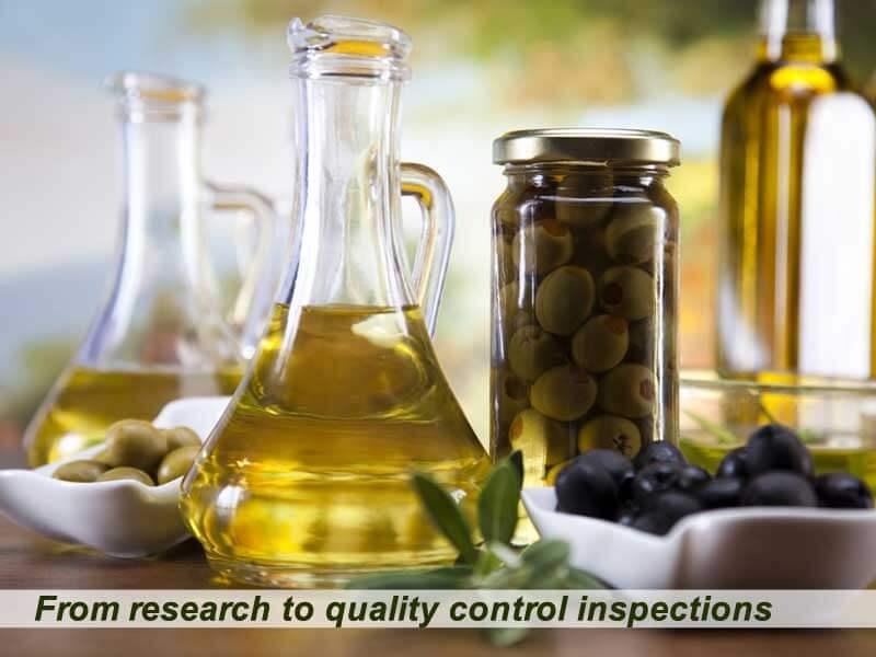 5_4_1_Olive_Oil