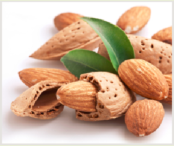 Fresh Delicious Almonds