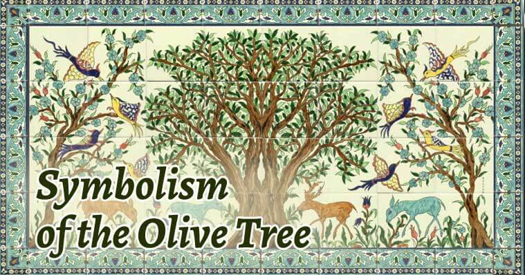 An Analysis Of The Themes And Symbols Of Willow Tree And Olive